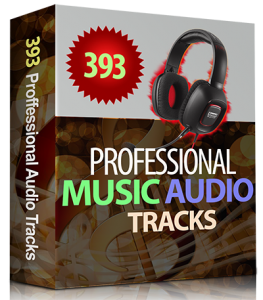 393 Professional Music Audio Tracks Collection