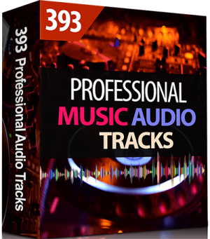393 Professional Music Audio Tracks