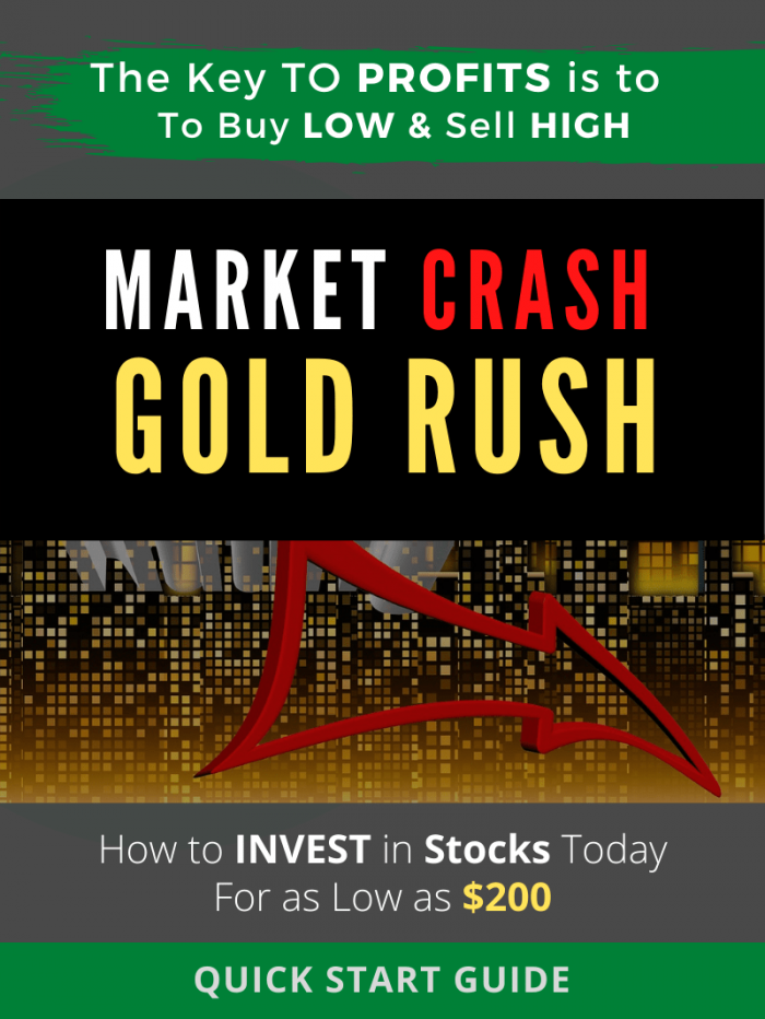 Market Crash Gold Rush. How to Buy Cheap Stocks online Amid Pandemic Recession