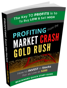 How to Make Money: Profiting from Market Crash Gold Rush: How to invest in Cheap Stocks Online Easy and Fast
